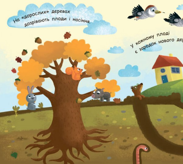 Моя перша енциклопедія. Як виростає дерево?